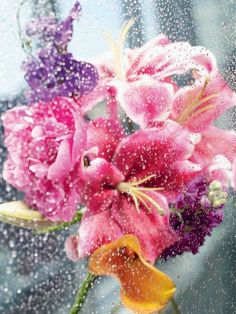 .fleur