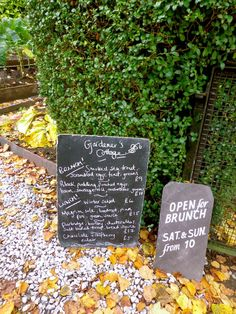 I Married A Shaman and Other Interesting Stories: The Gardeners Cottage, Edinburgh