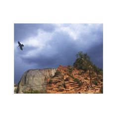 Scout Lookout Zion National Park-Utah Canvas Print