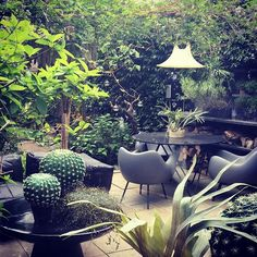 Abigail ahern's garden as featured on Gardener's World treating exterior as an interior, lighting, tropical, evergreen Small Outdoor Spaces, Outdoor Rooms, Back Gardens, Small Gardens, Garden Art, Garden Design, Garden Projects, Garden Ideas, Meditation Garden