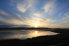 Amanecer en la Laguna de Pitillas (Navarra) by Ferreting, via Flickr
