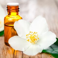 Jasmine Oil � Mood Booster and Stress Buster