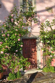 Roseneingang House Entrance, Rural House