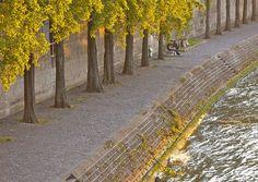 Golden Green, Paris