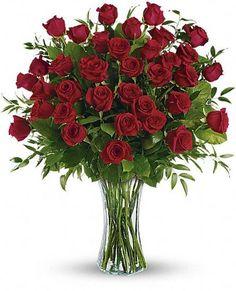 """  Dozens & Dozens of Red Roses! """