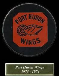 Image result for port huron wings hockey 1971 Port Huron, Hockey, Wings, History, Image, Historia, Field Hockey, Feathers, Feather