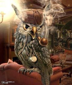 The Wise steampunk Owl Art Steampunk, Steampunk Animals, Graffiti Kunst, Owl Artwork, Bild Tattoos, Owl Cartoon, Owl Pictures, Beautiful Owl, Wise Owl
