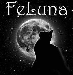 FeLuna Feline Cat and Luna the Moon and Stars T Shirt #animal #animal-lover #animal-lovers #art #astronomy #black-tshirt #cat #cat-lover #cat-quote #cat-shirts #cat-t-shirt #cats #fantasy #feline #gift #gift-for-students #gift-for-teacher #gift-student-teacher #graduation-gift #imagination #kitten-kitty #luna #moon #silhouette #starry-night #stars #t-shirt