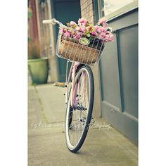 vintage pink bike ❤ liked on Polyvore