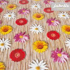 jubelis® Wachstuch mit Fotoprint bunte Margeriten auf Schilf