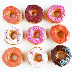 Donuts make any day better. Happy Wednesday! : @sparkandchemistry . . . . .  #donuts #donutday #donutworry #allforcolor #enjoylifeincolor #abmlifeiscolorful #fashion #instaprep #preppy #preppystyle #livelifeincolor #color #instastyle #instafashion #colorave #instablogger #wednesday