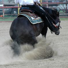 ~ ~ Reining Training Tips ~ ~ has fixes and exercise to a variety of problems a Reiner May encounter Horse Training Tips, Horse Tips, Horses And Dogs, Show Horses, Barrel Racing Tips, Ranch Riding, Horse Behavior, Cowgirl And Horse, Horse Riding