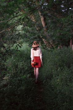 Through The Wilderness • Mr Fox