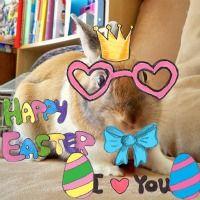 Fun Easter iPad Apps.