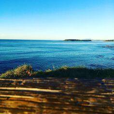 Broulee Island  #Broulee #brouleeisland #tomakin #southcoast #coastline #salty #sea #oceanlove #sunrise #Australia #beach #southcoastnsw by _thegirlcanshoot_ http://www.australiaunwrapped.com/ #AustraliaUnwrapped