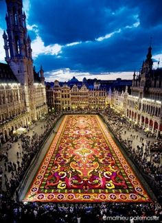 The Carpet Of Flowers In Brussels Belguim. Carpet of Begonias - 100 experienced gardeners descend on Brussels' historic Grand-Place square to put together this giant floral jigsaw puzzle.There are 300 flowers to every square meter, adding up to roughly 700,000 flowers in total.