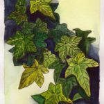 #worldwatercolormonth July 14 Ivy Leaves Karen Smith