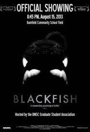 blackfish - Google Search