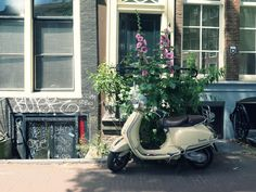 A weekend in Amsterdam - Where to stay, where to eat, what to do?