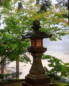 #koyasan #koyasantemple #koyasanjapan #koyasanmountain #koyasanworldheritage #lantern #japaneselantern #Japan, #japantravel #japanphoto #Japan #picoftheday #mtres #miqueltres #photographer