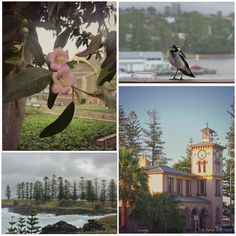 A collection of postcards, Kiama http://www.bizzylizzysgoodthings.com/2/post/2014/01/postcards-and-morsels-kiama-nsw.html
