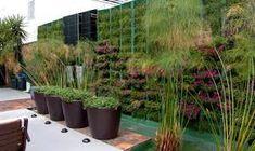 Resultado de imagem para jardim externo plantas