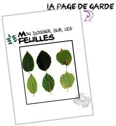 Les feuilles - New Class, Diy And Crafts, School, Nature, Kids, 4 Elements, Cycle 1, Initiation, Techno