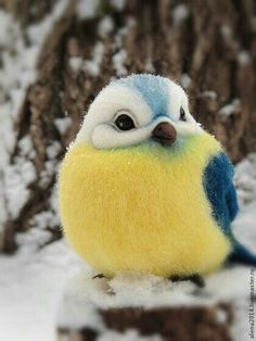 Cute Animal Pictures: 150 Of The Cutest Animals! Needle Felted Animals, Felt Animals, Cute Baby Animals, Needle Felting, Animals And Pets, Kids Animals, Funny Animals, Cute Birds, Pretty Birds
