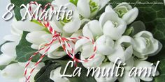 Risultati immagini per cel mai frumos martisor de 1 martie 8 Martie, Quince Decorations, Happy Birthday Dad, First Day Of Spring, Coloring Books, Red And White, March, Rose, Flowers