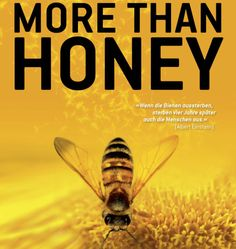 the importance of the north american honey bee North american pollinator protection campaign  honey bees pollinate approximately $10 billion worth  the importance of bees and other insect pollinators in .