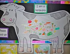 Herbivores and Carnivores - cute idea to make 3 animals and food they may eat, then have the kids sort the food into the right groups (herbivore, carnivore, omnivore)