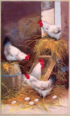 Flower Pattern Drawing, Chicken Barn, Barn Animals, Decoupage Printables, Rooster Art, Farm Art, Decoupage Vintage, Unusual Art, Wildlife Art