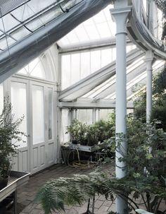 The Greek Botanical Gardens in Copenhagen.