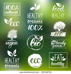Vector eco organic bio logos. Healthy eat retro logo set. Vegan, organic, healthy, natural food and drink logos. Farm market, store logo collection. Raw, healthy, vegan food badge, labels. Handwritten - stock vector