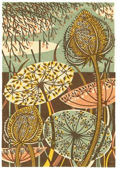 """""""Teasel"""" - a wood engraving print by Angie Lewin http://www.angielewin.co.uk/collections/sold-out-editions/products/teasel"""