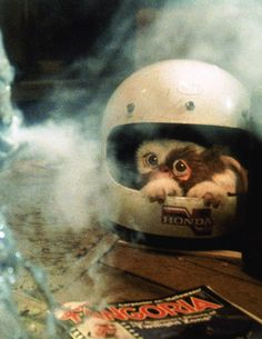 #Gremlins #Gizmo I love that there's a Fangoria mag on Billys floor.