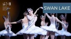 Swan Lake Seattle, WA #Kids #Events