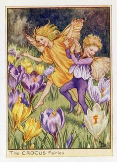This beautiful Crocus Flower Fairy Vintage Print by Cicely Mary Barker was printed c.1950 and is an original book plate from an early Flower Fairy book...