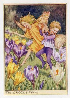 Crocus Flower Fairy Vintage Print, c.1950 Cicely Mary Barker-boekillustratie plaat