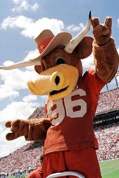 """Hook 'em, the University of Texas Longhorns mascot. First seen in this Longhorn was named after the popular """"Hook 'em Horns"""" hand gesture. Texas Longhorns Football, Ut Longhorns, Football Team, College Football, University Of Texas Football, Eyes Of Texas, Hook Em Horns, Team Mascots, College Fun"""