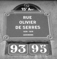 La rue Olivier-de-Serres  (Paris 15ème)