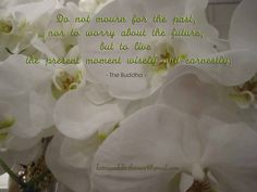 Do not mourn for the past, nor to worry about the future, but to live the present moment wisely and earnestly.  - The Buddha