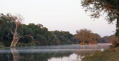 Camping on the bank of the Limpopo River, Tuli Block, Botswana Africa, Country Roads, Scene, Camping, River, Trees, Outdoor, Image, Art