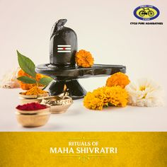 Maha Shivratri is celebrated on the 24th of February 2017. One of the most important rituals of this festival is the Shiva linga abhishekam, where the devotee offers puja essentials as mentioned in the Shiva Purana. The Shiva linga is bathed in milk, yoghurt, ghee, honey, rose water, sandalwood and vermillion paste. Other offerings of the puja include: flowers, bilva leaves, dhatura, betel leaves, incense sticks, and oil lamps.