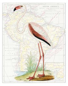 Tall Pink Flamingo, Victorian Art Print, Map or Sheet Music Art, Poster, Giclee Print, Antique Bird Art Print, Wall Decor, Dictionary Print