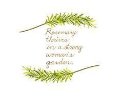 Rosemary Watercolor Painting Herb Print by trowelandpaintbrush