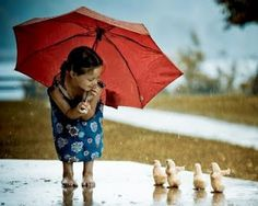 Ducklings love the rain. Aren't they cute?  Where oh where is mommy? The child seems very interested in helping them.   Sweet.