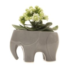 Chive Grey Mini Elephant Planter (£15) ❤ liked on Polyvore featuring home, outdoors, outdoor decor, elephant planter and ceramic planters