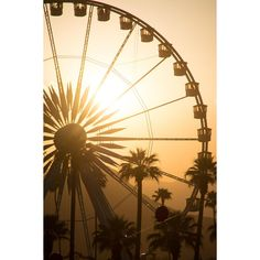 Sun Sets Over Coachella ❤ liked on Polyvore featuring backgrounds, pictures, fillers, deco, other, phrase, quotes, saying and text