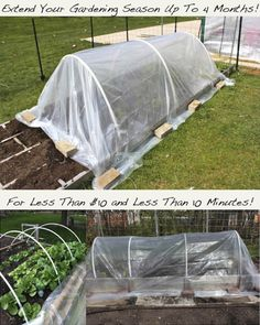 DIY-Greenhouses-apieceofrainbowblog (12)